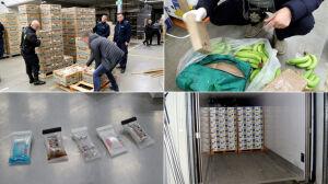 Kokaina warta miliony w ciężarówce z bananami
