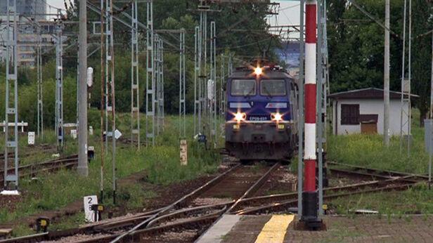 Maszynista zatrzymał pociąg Tomasz Zieliński /tvnwarszawa.pl