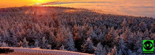 """""""Takie cuda daje natura"""". Słońce, stratusy i mgła"""