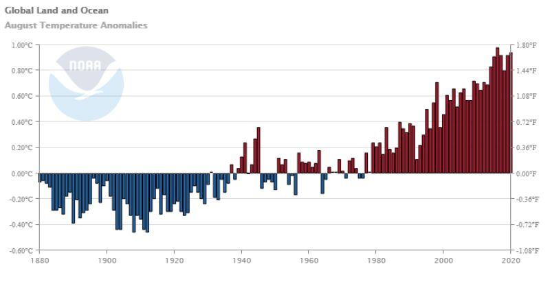 Odchylenie od średniej temperatury w sierpniu w kolejnych latach (NOAA)