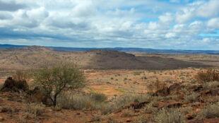 Australia gigantycznym pochłaniaczem węgla. Grozi jej więcej pożarów?