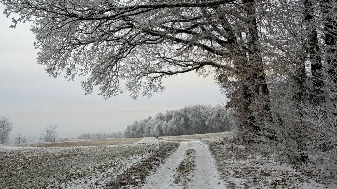 Zima będzie do nas nieśmiało zaglądać