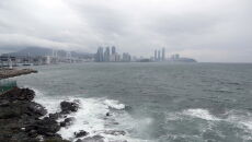 Skutki tajfunu Maysak (PAP/EPA/YONHAP)